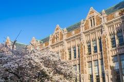 西雅图华盛顿大学,西雅图, washingto n,美国 04-03-2017 :ch 图库摄影