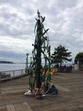 西雅图码头 免版税库存图片