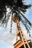 西雅图空间针在黄昏的树下 免版税库存照片