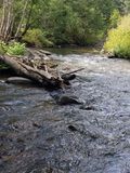 西马伦河峡谷 免版税库存照片