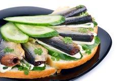 西鲱三明治,在板材的开胃菜 库存图片