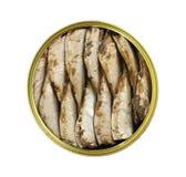西鲱在白色背景隔绝的圆的锡钓鱼 免版税库存照片