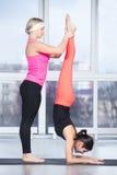 要做的教练帮助的学生用羽毛装饰孔雀瑜伽姿势 免版税图库摄影