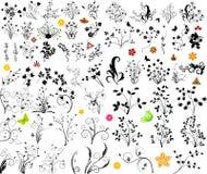 要素花卉向量 免版税库存照片