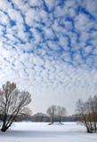覆盖天空冬天 免版税库存照片