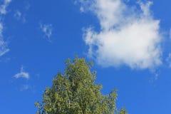 覆盖天空夏天 库存照片