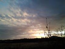覆盖天空日落自然哀伤的心情 免版税库存照片