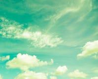 覆盖天空葡萄酒 库存图片