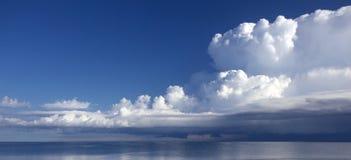 覆盖湖松的风景视图 免版税库存照片