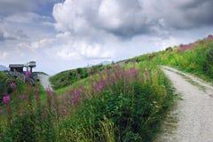 覆盖白色 滨海阿尔卑斯山脉 与一个草草甸的山风景前景的 免版税图库摄影