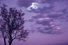 覆盖紫红色日落 免版税库存图片