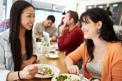 见面为在咖啡店的午餐的两个女性朋友朋友 免版税库存照片