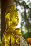 观世音菩萨金子雕象是美丽的 库存图片