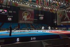 观众和运动员世界冠军的在操刀 库存照片