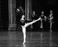 观众这王子成人仪式芭蕾天鹅湖人群  库存照片