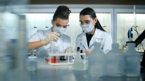 观察蓝色显示颜色的可爱的年轻科学家在玻璃管转移 影视素材