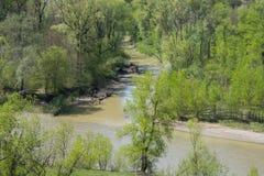 观点的两条河的合流 免版税库存照片