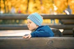 观点的年轻男孩在有许多coulours树的秋天公园  免版税库存图片