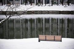 观点的湖边在冬天 免版税库存照片