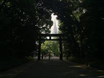观点的NTT Docomo代代木通过a由树在东京,日本自然地创造了框架 免版税库存照片