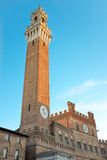 观点的Torre del Mangia在锡耶纳 图库摄影