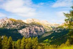 观看从白云岩的落矶山脉的杉木森林的绿色山谷 免版税库存照片