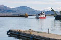 观看在冰岛的鲸鱼的船 库存照片