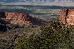 观看在科罗拉多国家历史文物的一个红色岩石峡谷下 免版税库存照片