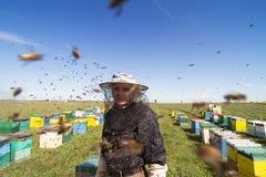 观看在他的蜂蜂房的养蜂家画象 免版税库存照片