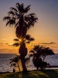 观看在mediterrean海的日落 免版税库存照片