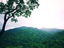 观看天的风景本质在山 免版税库存图片