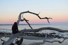 观看日出,染黑岩石海滩 免版税库存图片