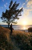 观看日落在钛黑貂靠岸在圣徒Joeph在雷乌尼翁冰岛 图库摄影
