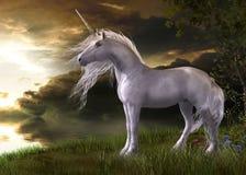 观看日落的迷人白色独角兽 免版税库存照片
