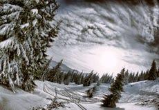 观看有一个角度到冬天山和黑暗的森林 库存照片