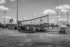 观看棒球比赛 库存照片