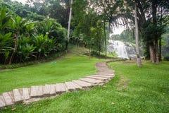 观看瀑布的路 库存图片