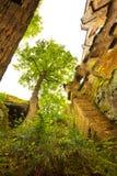 观看由中世纪哥特式修道院的废墟决定在镇  库存照片