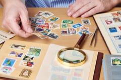 观看邮票的一汇集人 免版税库存照片