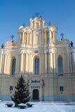 观看维尔纽斯大学,立陶宛 免版税库存照片