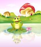 观看他的从水的青蛙反射 免版税库存照片