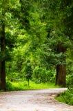 规则式园林或草坪,风景视图 免版税库存照片
