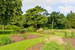 规则式园林新绿色风景在夏天 免版税库存图片
