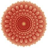 规则形状红色花顶视图  库存照片