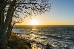 视图向波罗的海 免版税库存照片