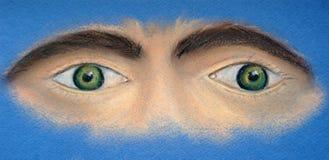 视域 二只眼睛 面孔的片段 向量例证