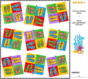 视觉谜语-发现与啪嗒啪嗒的响声的两张相同卡片 免版税库存图片