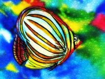 角度与水泡影的鱼水彩 库存照片