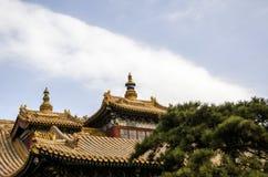 角度高屋顶寺庙 免版税库存照片