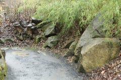 角落在有树桩和石头的庭院里 免版税库存图片